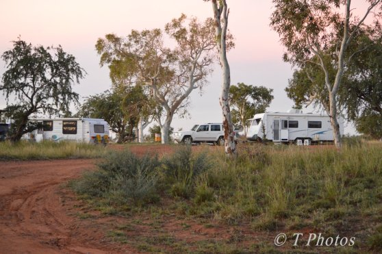 Camping under the trees in DeGrey River